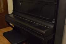 Пианино Bluthner