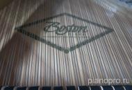Рояль Boston GP-156 PE