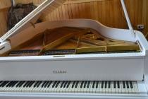 Белый рояль Petrof кабинетный.