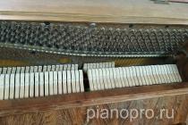 Пианино Zimmerman